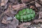 Житель Заводоуковска хранил дома гранату