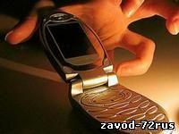В Заводоуковске молодая безработная девушка похитила сотовый телефон у знакомой