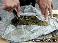 В Заводоуковске сотрудники ППС изъяли 24 грамма марихуаны